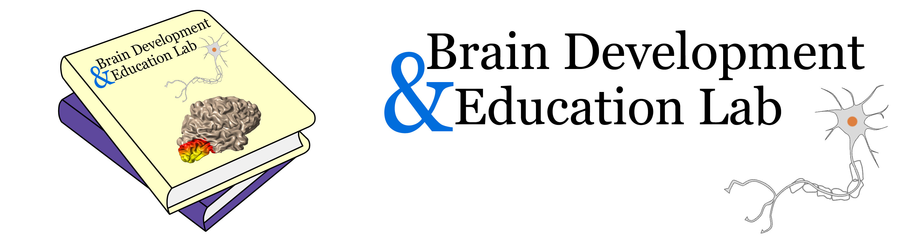 Brain Development & Education Lab