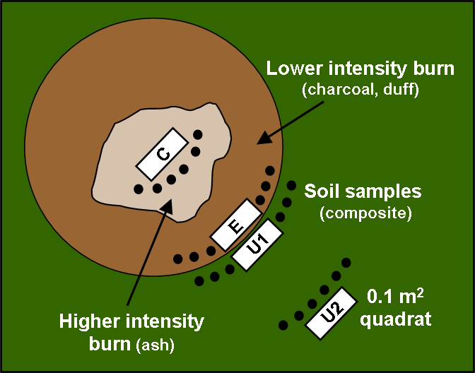 Burn pile sampling schematic