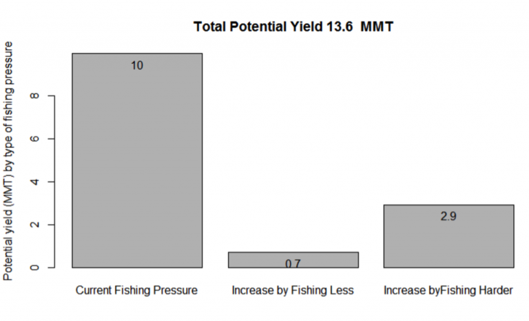 Figure 10. Long term yield to be obtained under current fishing pressure, and how much could be obtained by fishing overexploited stocks less, and underexploited stocks more.
