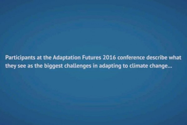 Adaptation video screenshot