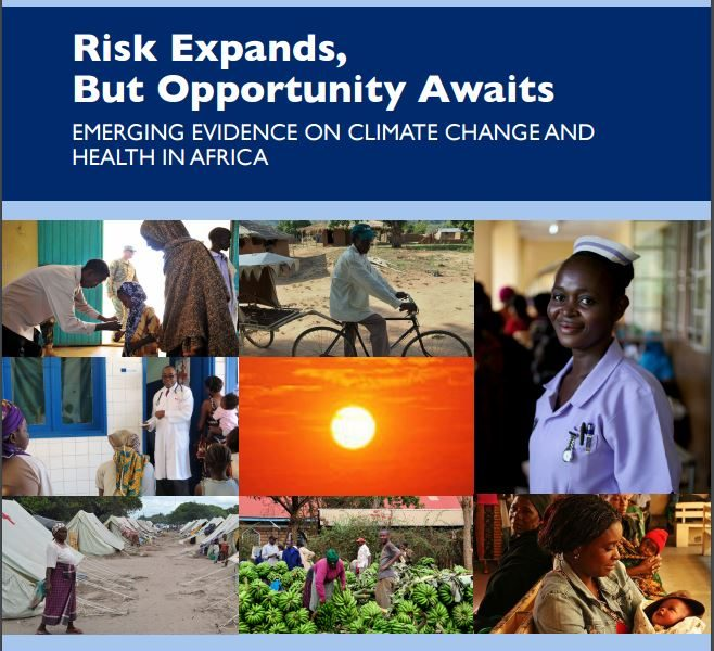 USAID Africa Report