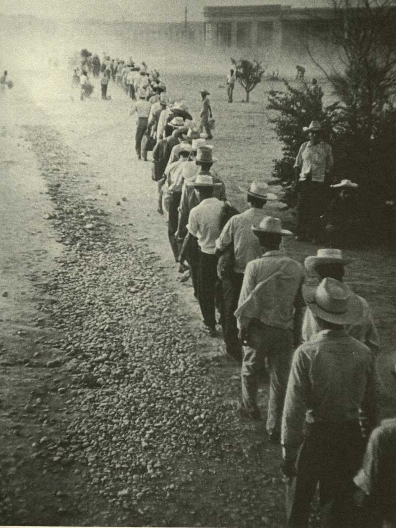 farm labor organizing in washington state braceros being processed in u s department of labor