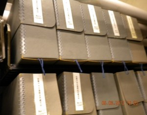 Boxes containing Wu Xianzi archives