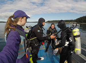 Divers prep on a boat