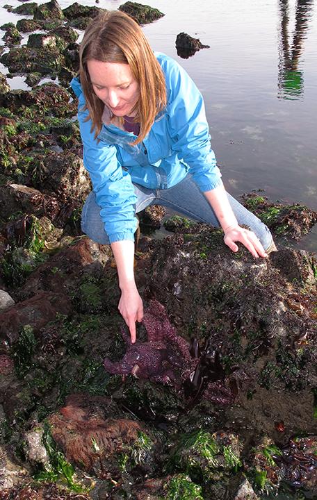 Intertidal surveying