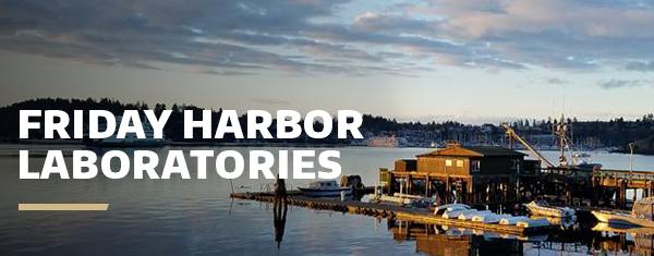 A coastal view of Friday Harbor Laboratories