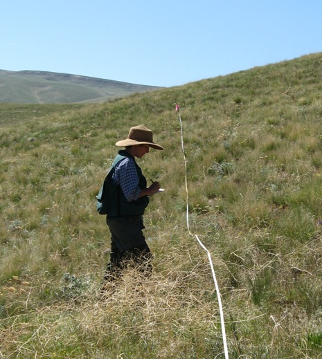 Our field assistant Lorna Emerich monitoring a permanent vegetation plot on ALE