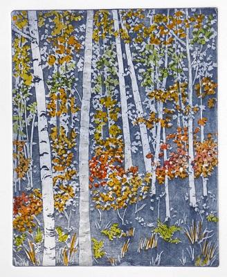 Birches, Alders & Vine Maples, North Cascades by Molly Hashimoto