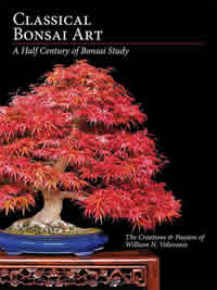 Classica bonsai art book jacket