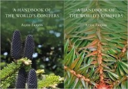 [A Handbook of the World's Conifers] cover