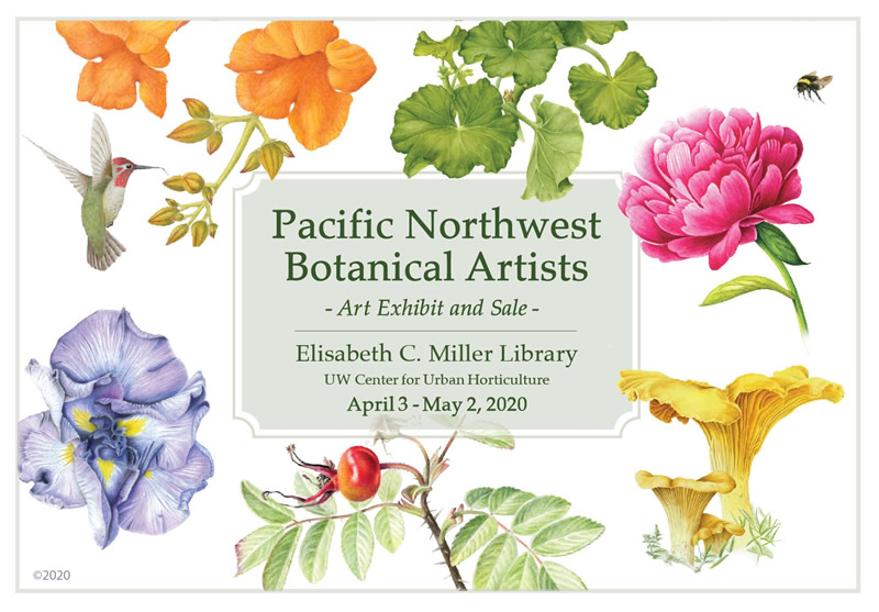 POSTPONED - Art Exhibit: Pacific Northwest Botanical Artists Group Show