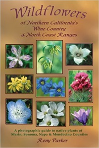 Wildflowers of Northern California's Wine Country & North Coast Ranges cover