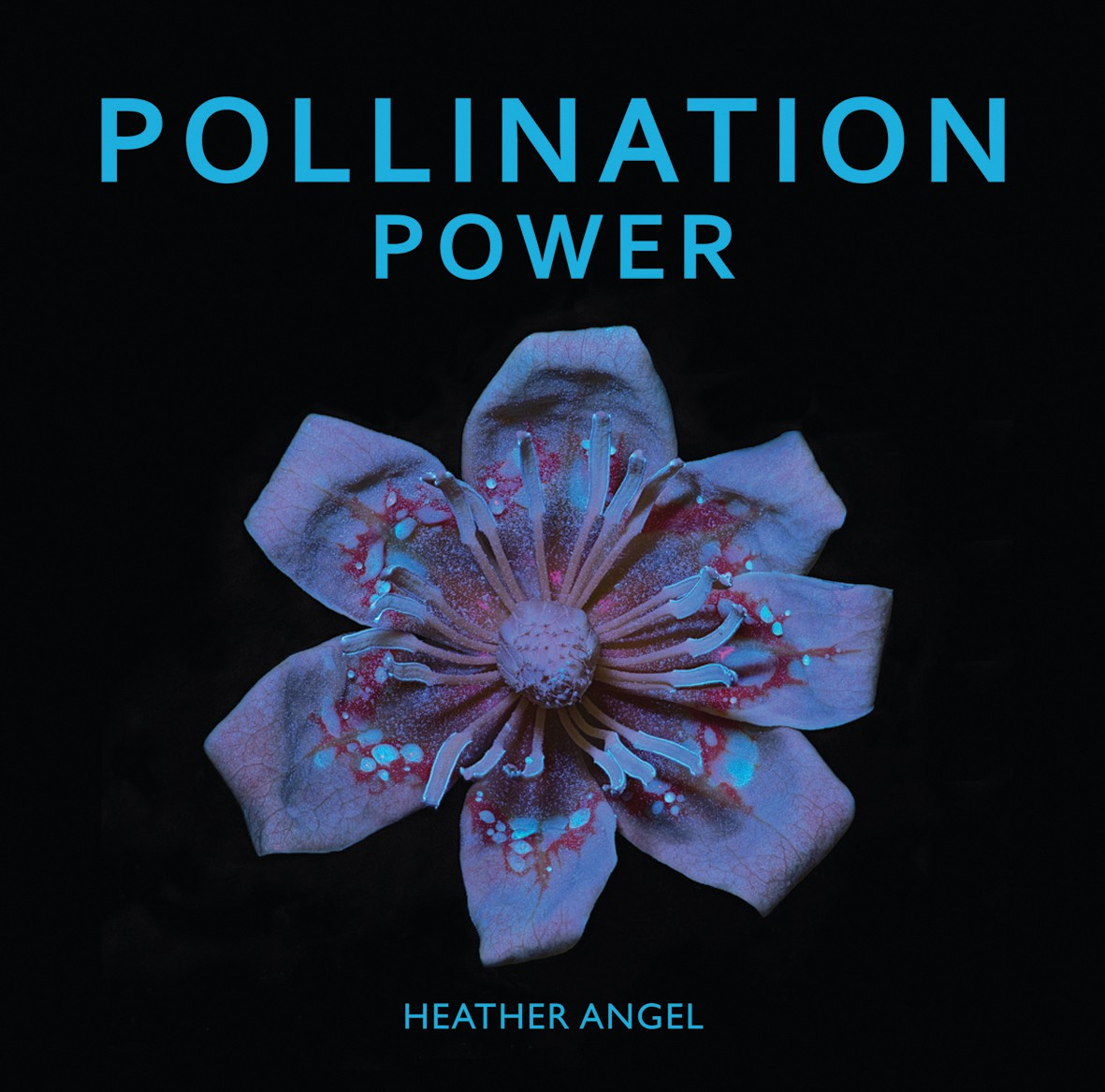 Pollination power / text Heather Angel ; photographs Heather Angel.