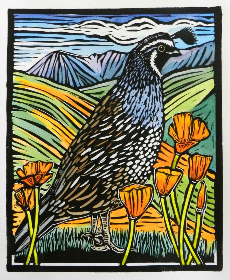 quail with orange poppies and fields in the background