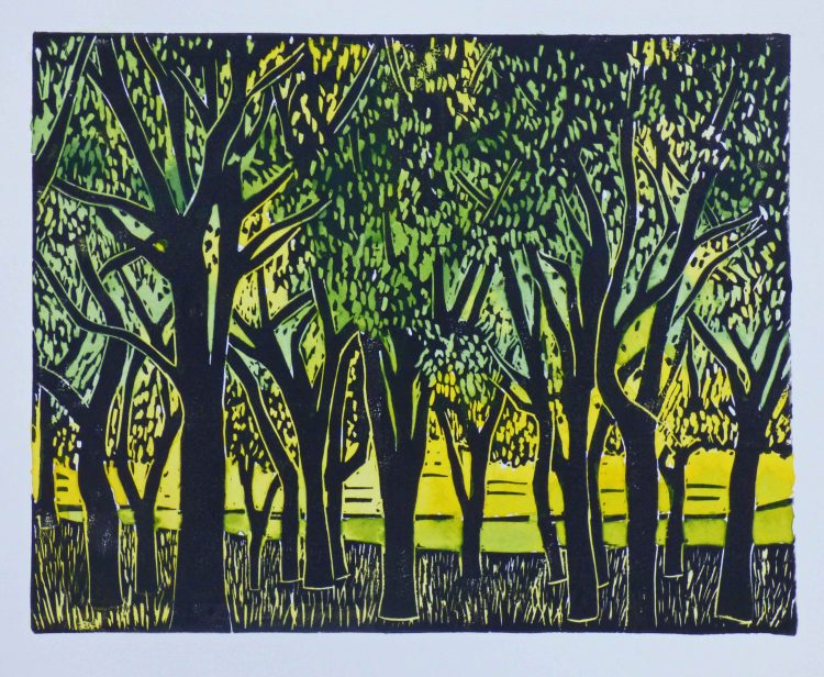 grove of trees with black trunks on a yellow blackgound