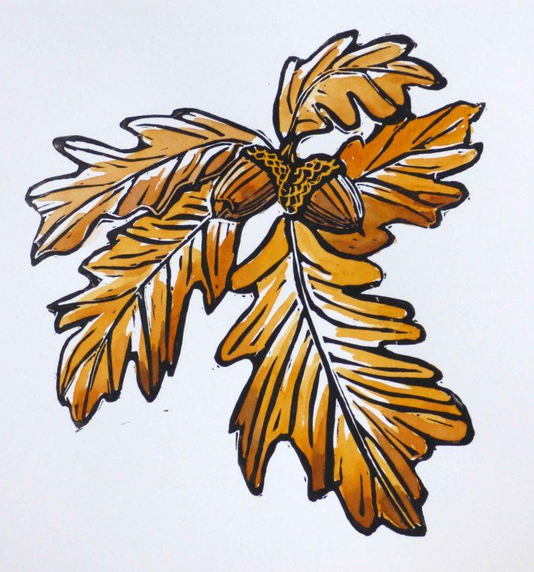 5 brown oak leaves with 2 acorns