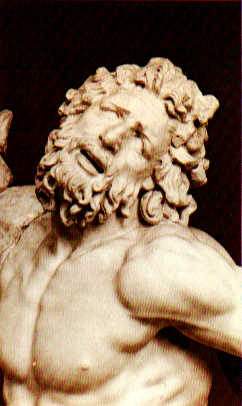 laocoon face - photo #4