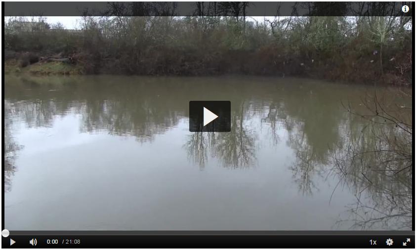 Water Runoff Vid