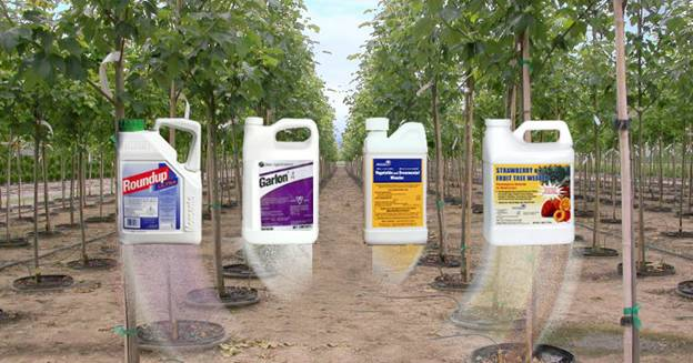 the importance and dangers of pesticides and herbicides This toxic herbicide comes with known health risks, but it's still being used   that's really important when we're thinking about development,.