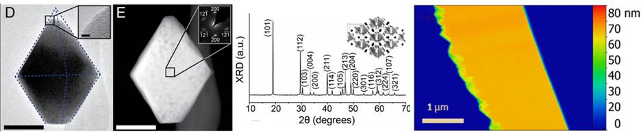 nanotechnology afm optical tweezers