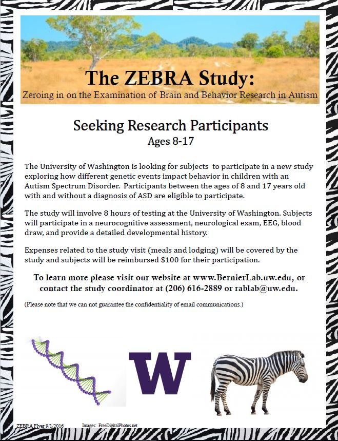 ZEBRA flyer in JPEG 9.1.16
