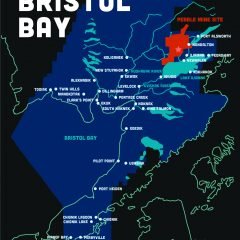 Protect Bristol Bay postcard by Emma Teal Laukitis