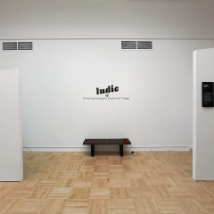 Dwelling Amongst a Ludic Internet of Things by Aubree Ball