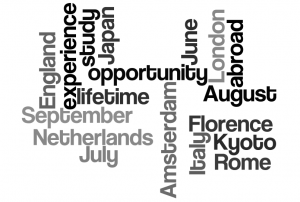 2012 study abroad word cloud created with Wordle