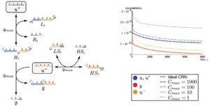 A biomolecular implementation of linear I/O systems