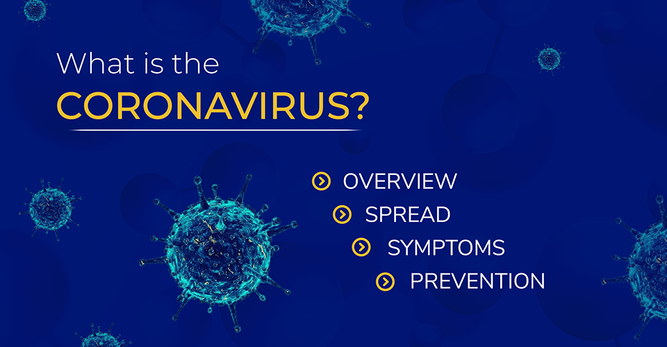 1 What is coronavirus (002)_cropped