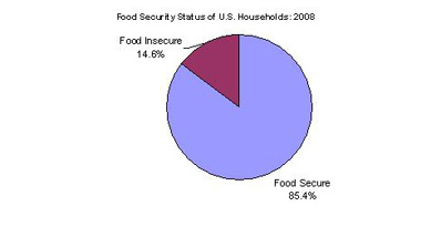 chart 14% households food insecure 2008