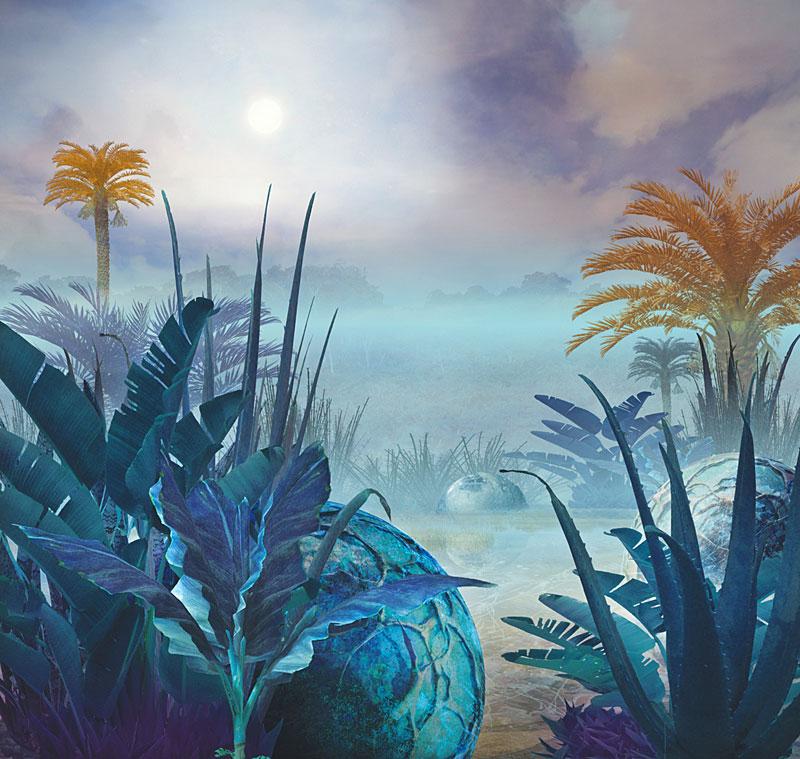 Exoplanets Detection Habitability Biosignatures