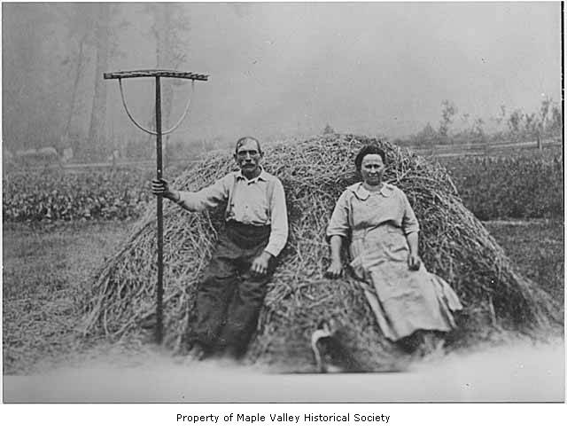 an analysis of farmworkers problems during the great depression and today Migrant agricultural workers and their socio-economic, occupational and health conditions– a literature review.