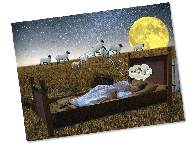 Collage-type artistic image of a person asleep in a bed outdoors in a field, with sheep jumping a fence in the background