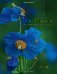 Blue Heaven cover