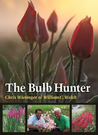 Bulb hunter book cover