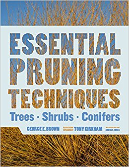[Essential Pruning Techniques] cover