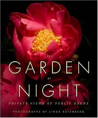Garden at night cover