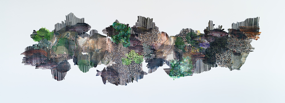 Human Dimensions of Biotic Homogenization by Markel Uriu
