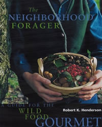 Neighborhoon Forager cover