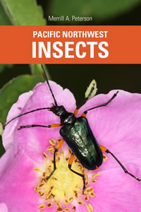Pacific Northwest Insects book cover