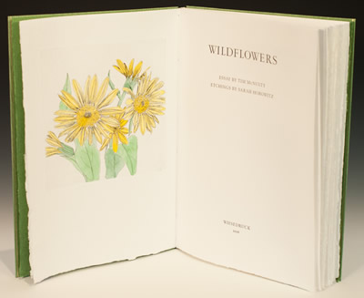 Art Exhibit: Wildflowers of Chelan County by Sarah Horowitz