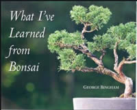 What I've learned from bonsai cover
