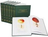 Illustrated history of apples book cover