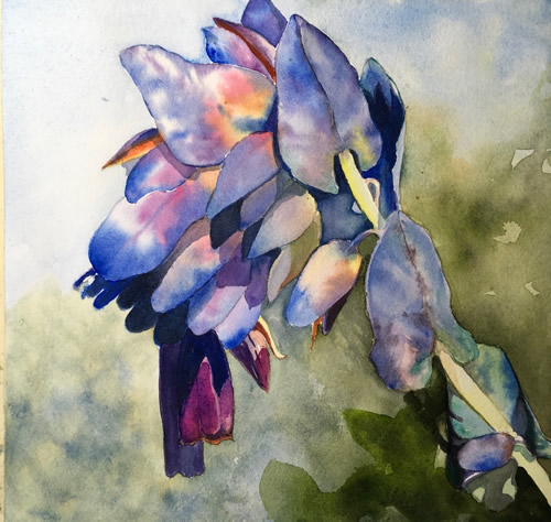 Art Exhibit: Learning the Flowers: Watercolors by Linda Andrews