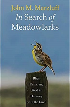 [In Search of Meadowlarks] cover