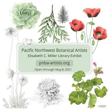 Pacific Northwest Botanical Artists