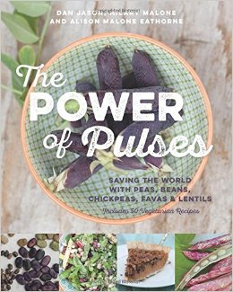 Power of Pulses cover