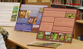 2008 student research exhibit