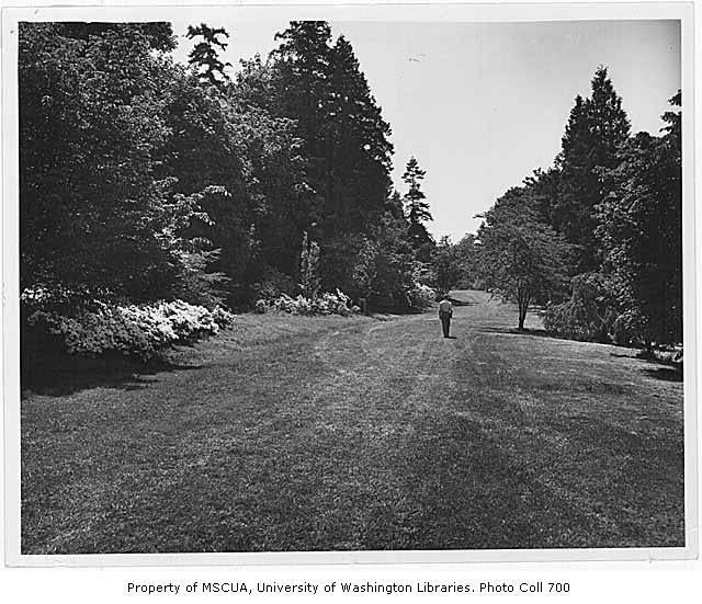 man walking on a grassy path
